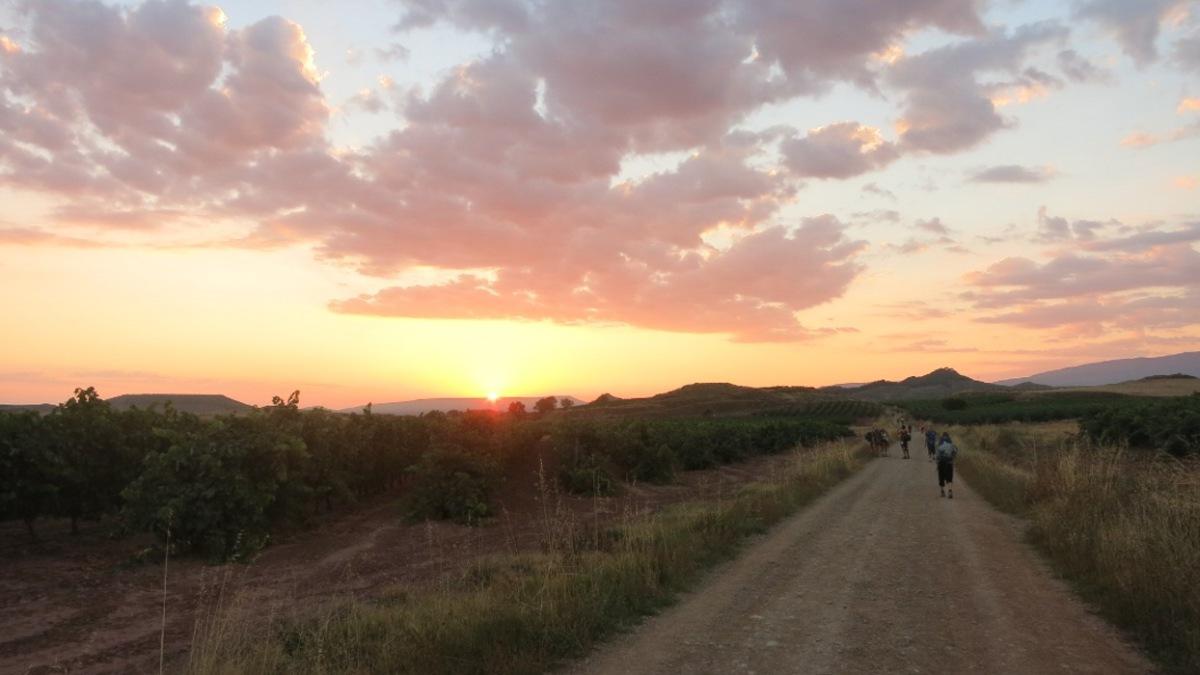 Camino - blog