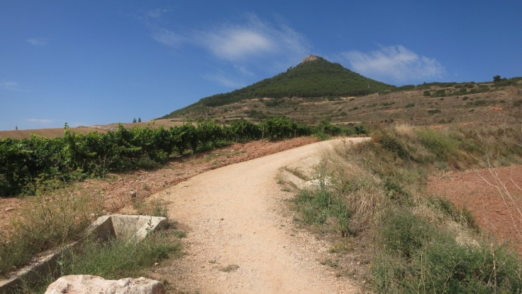 Camino - Hilltop
