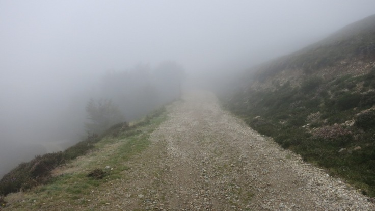 Camino - The Mist