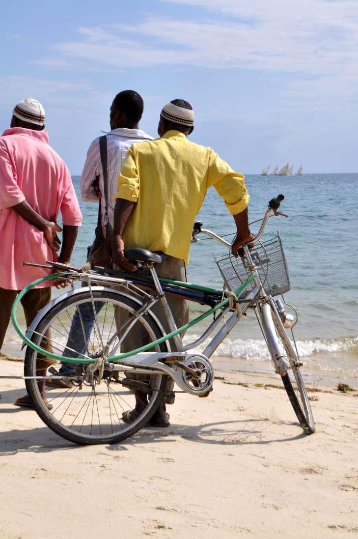 The Beach Bike