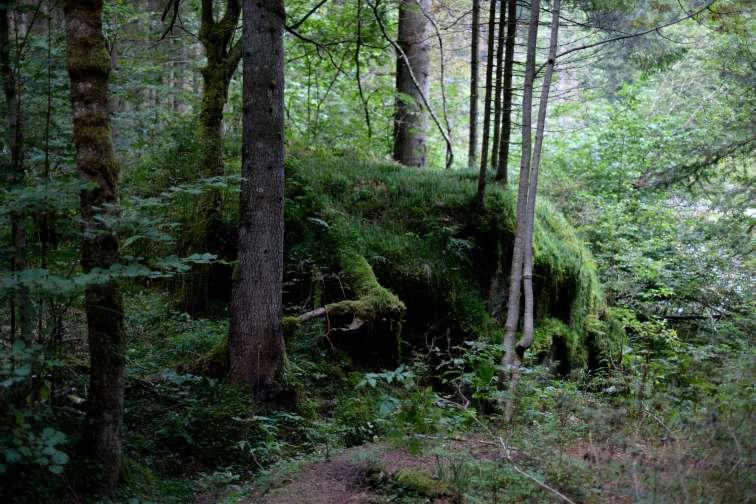 ww1-bunker